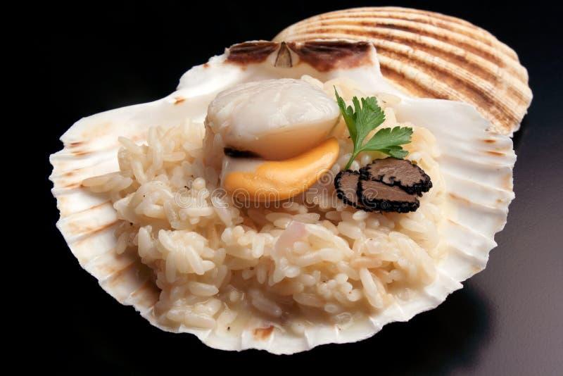 Italiensk `-risotto` med trufflw och kammusslan royaltyfria bilder
