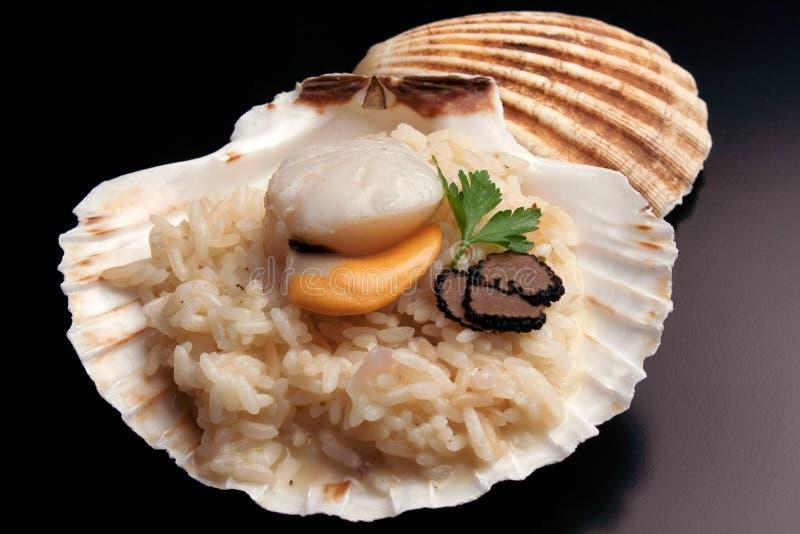 Italiensk `-risotto` med trufflw och kammusslan royaltyfri fotografi