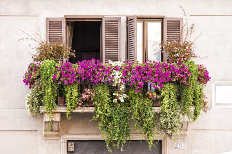 Italienska balkongfönster mycket av växter och blommor arkivbilder