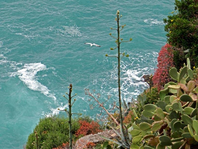 italienskt hav royaltyfri fotografi