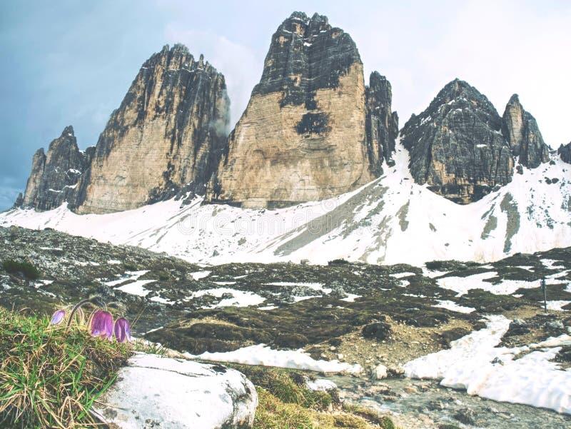 Italy Alps, Tre Cime Di Lavaredo, Dolomites, Europe royalty free stock image