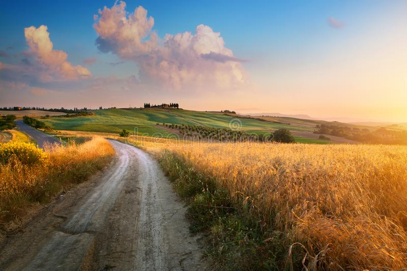 Italy autumn  countryside landscape, dirty road and farmland over sunset sky stock photos