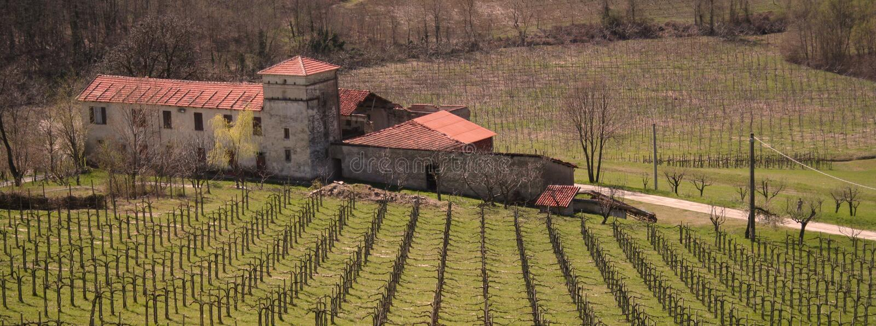 Italy. Liguria. Italian vineyard with villa stock photos