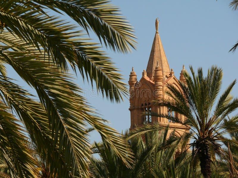 italy Palermo Sicily ?r?dziemnomorski ogr?d z drzewkami palmowymi i obraz royalty free