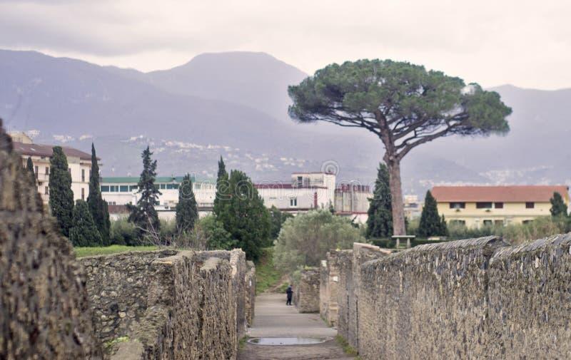 italy Pompei obraz stock