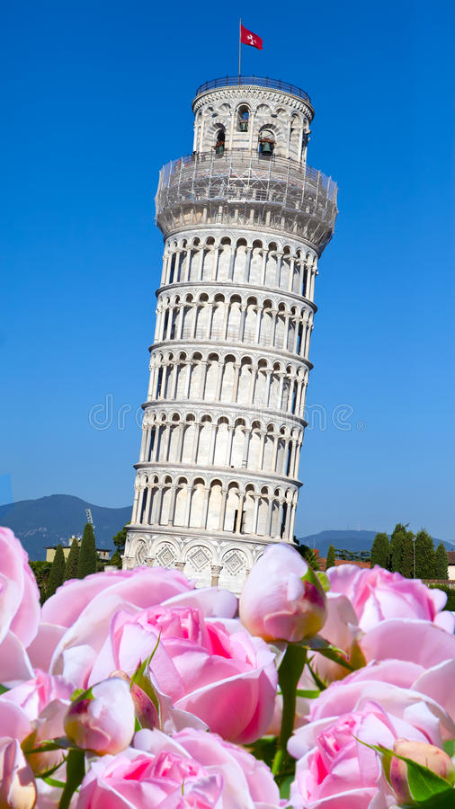 italy target138_0_ Pisa wierza zdjęcie royalty free