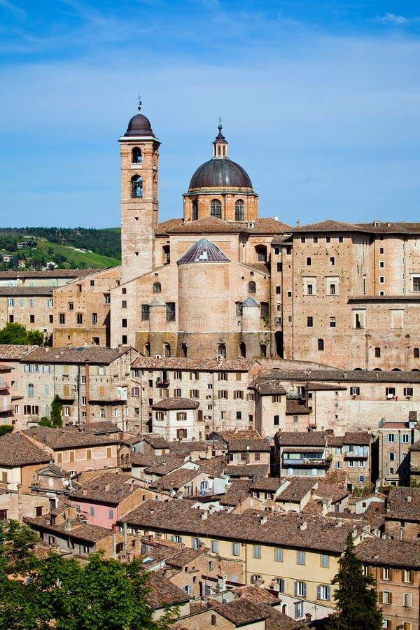 italy Urbino fotografia royalty free