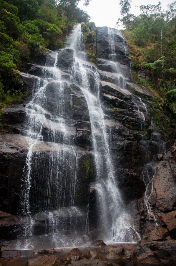 Itatiaia park narodowy w Rio De Janeiro stanie, Brazylia zdjęcie stock