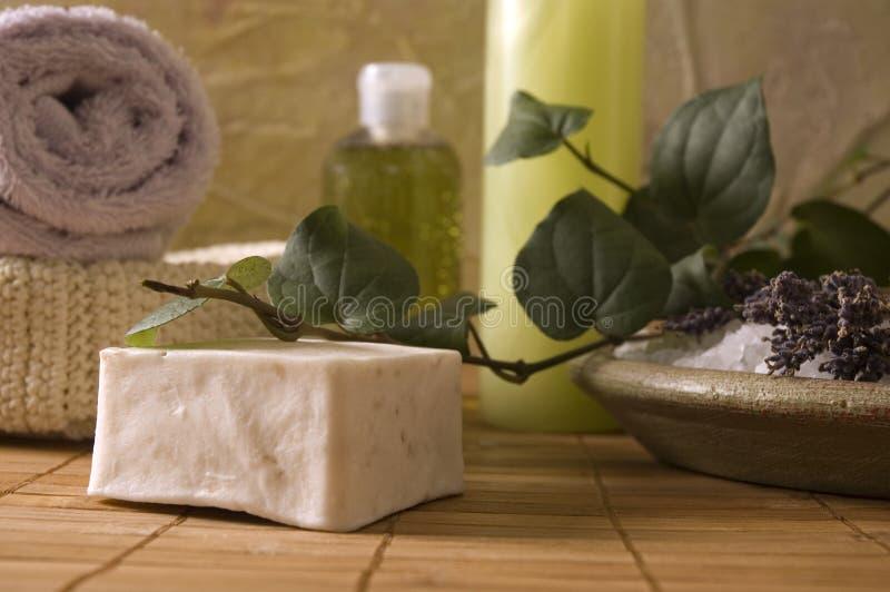 Items del baño de la lavanda. aromatherapy imagen de archivo