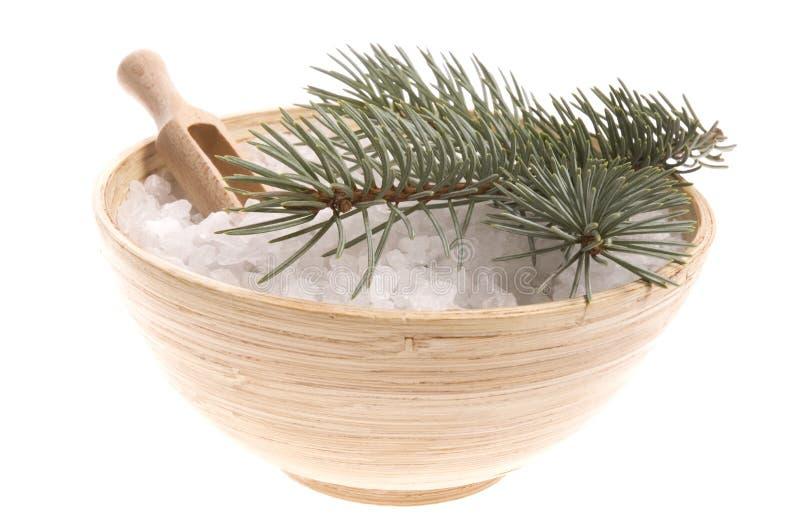 Items del baño del pino. medicina alternativa fotografía de archivo libre de regalías