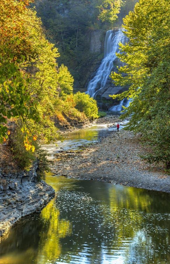 Ithaca Falls och nedgångliten vik arkivfoton