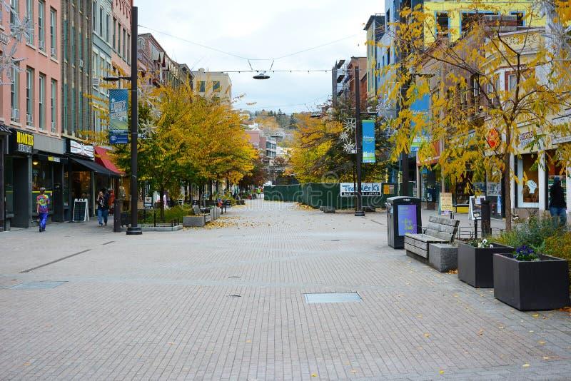 ITHACA, NEW YORK - 31 ULT 2019: Commons är ett unikt köpområde för fotgängare med fyra block och självständigt ägda butiker och arkivfoton