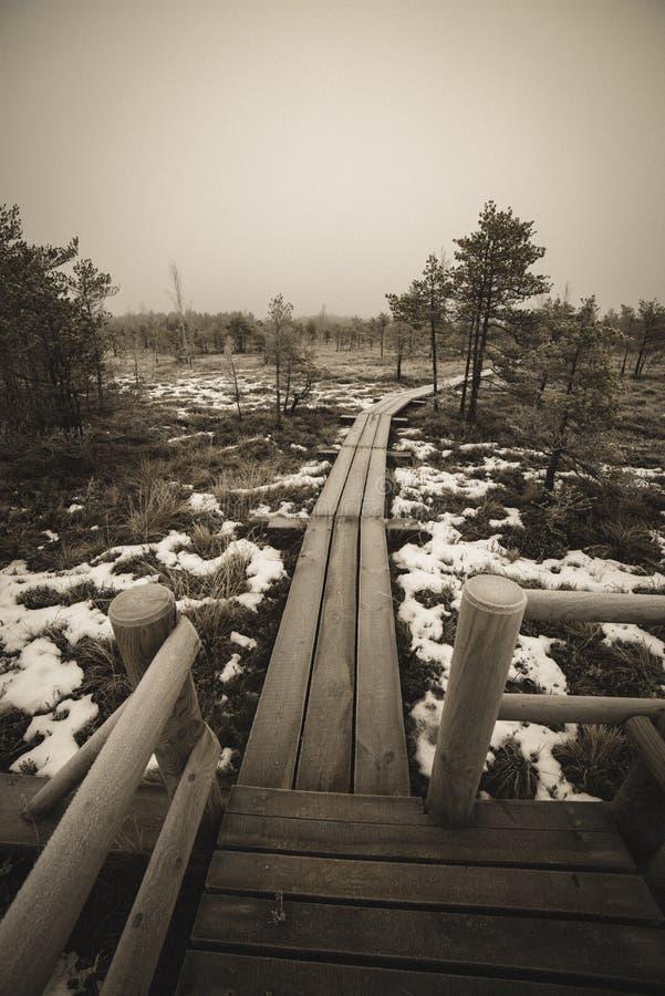 itinéraire aménagé pour amateurs de la nature dans le marais dans la neige profonde en hiver - rétro regard de cru image stock