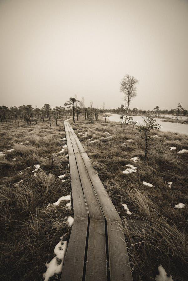 itinéraire aménagé pour amateurs de la nature dans le marais dans la neige profonde en hiver - rétro regard de cru photo stock