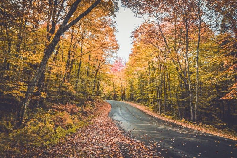 Itinéraire 3 du comté entouré par le feuillage d'automne brillant dans le long lac NY photographie stock libre de droits