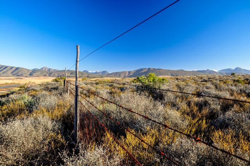 Itinéraire proche 62 de terre de Bush - Oudtshoorn, Afrique du Sud photographie stock