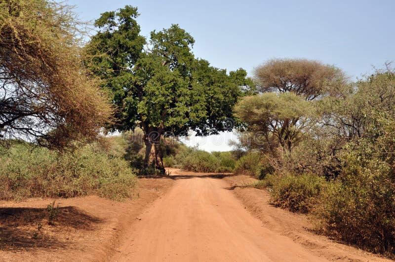 Itinerario di safari fotografia stock