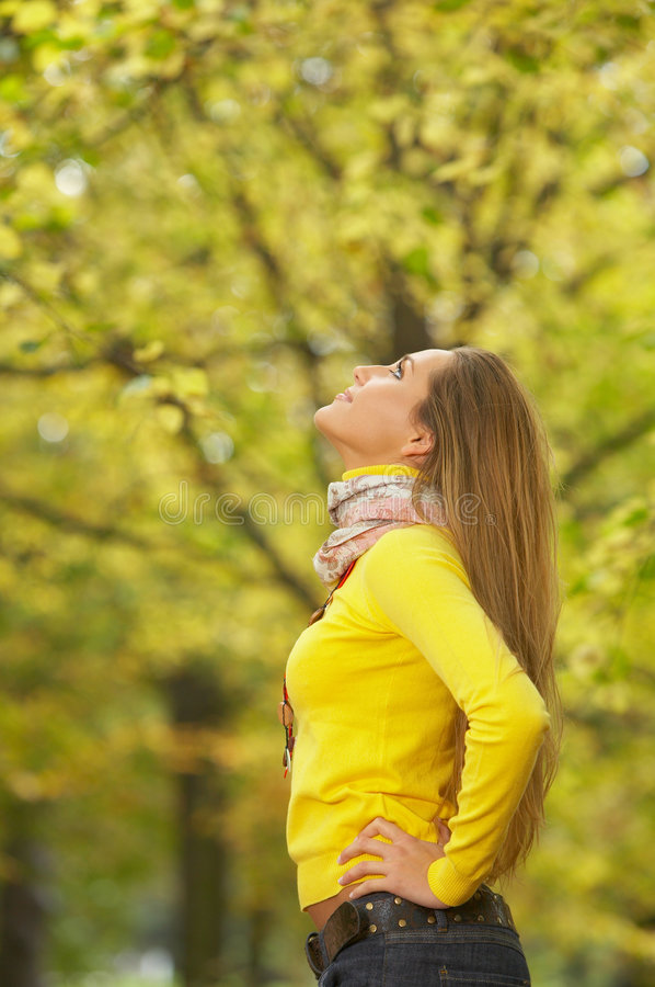 Download Its Autumn! stock photo. Image of golden, trees, happy - 3481938