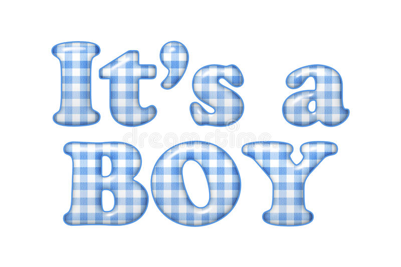 Its a boy. Words Its a Boy in blue gingham material, Its a boy vector illustration