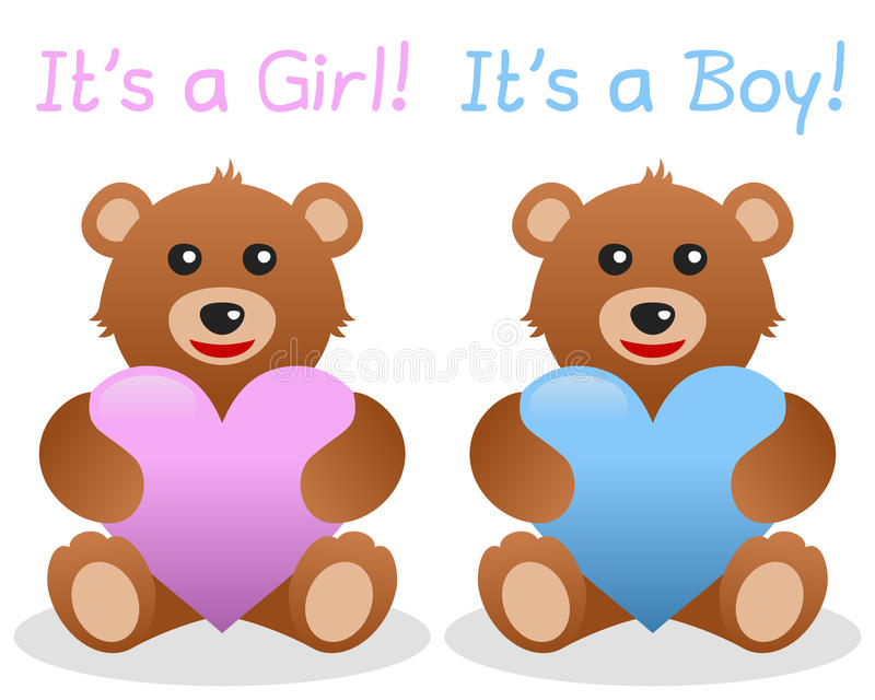 Download Its A Girl And Boy Teddy Bear Stock Vector - Illustration: 27823433
