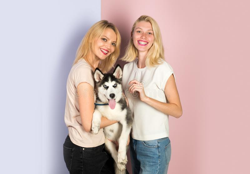 Its hard being this perfect. women with dog pet. Happy girls with sensual look. Pretty women hold pedigree dog royalty free stock photo