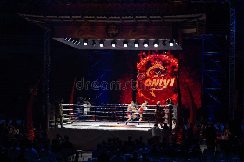 IV lutas internacionais somente 1 foto de stock royalty free