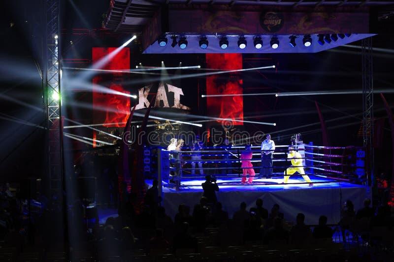 IV lutas internacionais somente 1 imagens de stock