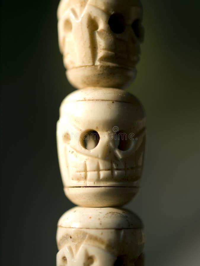 Free Ivory Skeletons Royalty Free Stock Photo - 12353655