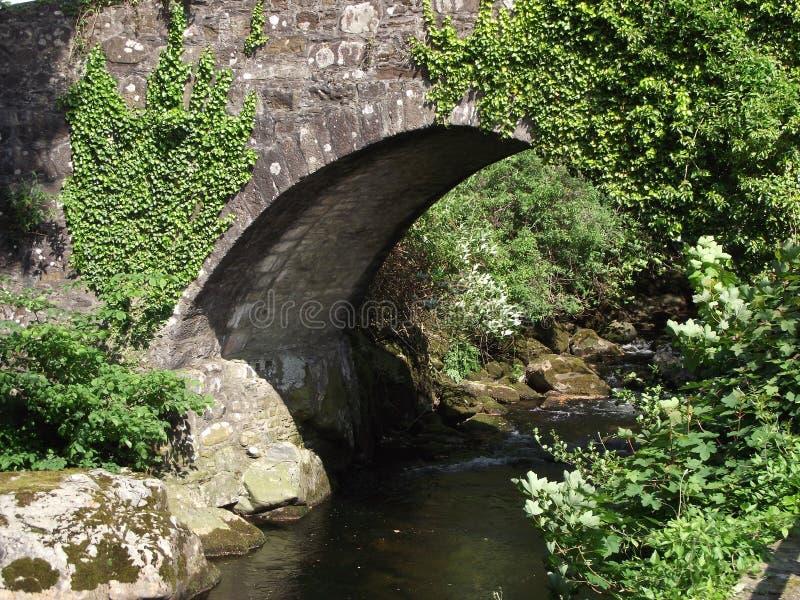 Ivy Bridge, Ivybridge, Devon het UK stock foto's