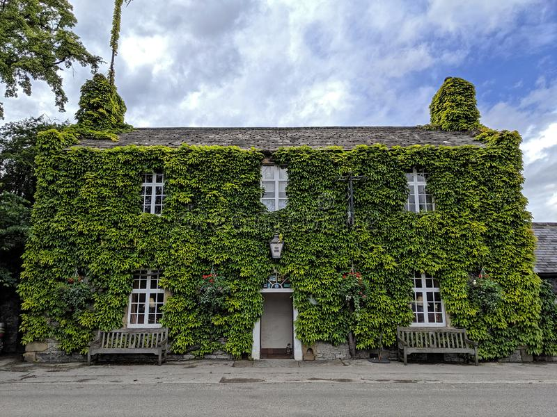 Ivy clad English Country Pub royalty free stock image