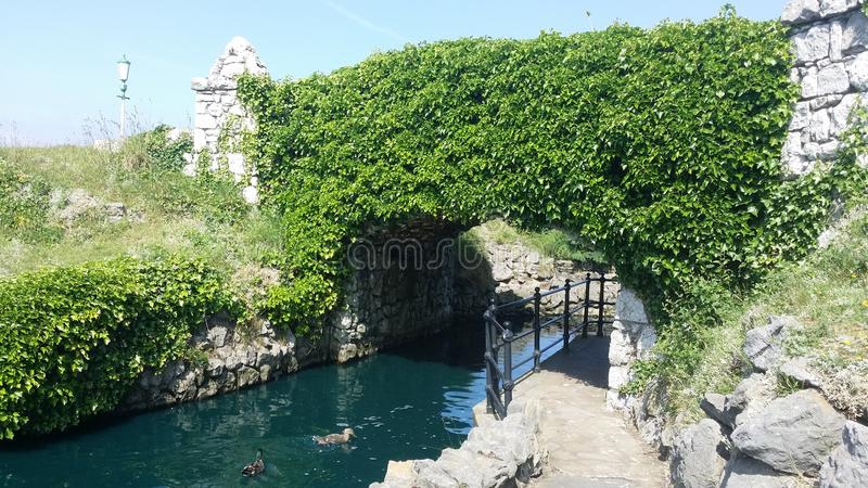 Bridge within St.Annes water garden. An Ivy covered bridge in St.Annes Water Gardens, Lancashire stock photography