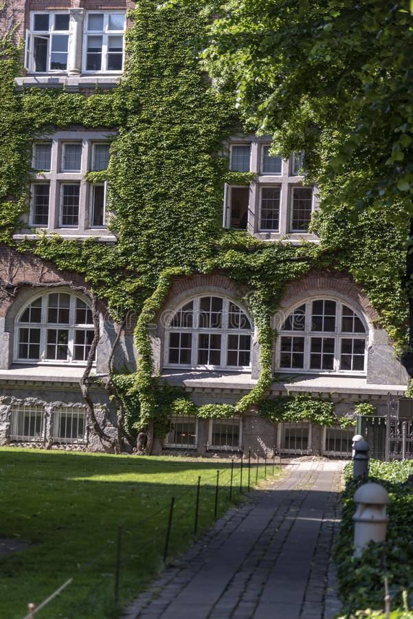 Ivy covered building in the Sankt Petri Church grounds Copenghagen royalty free stock photos
