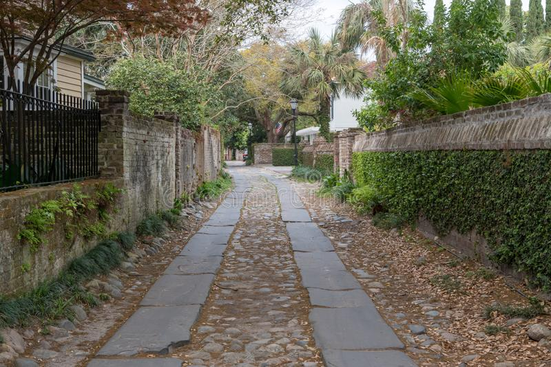 Ivy Covered Side Alley in Charleston stock image
