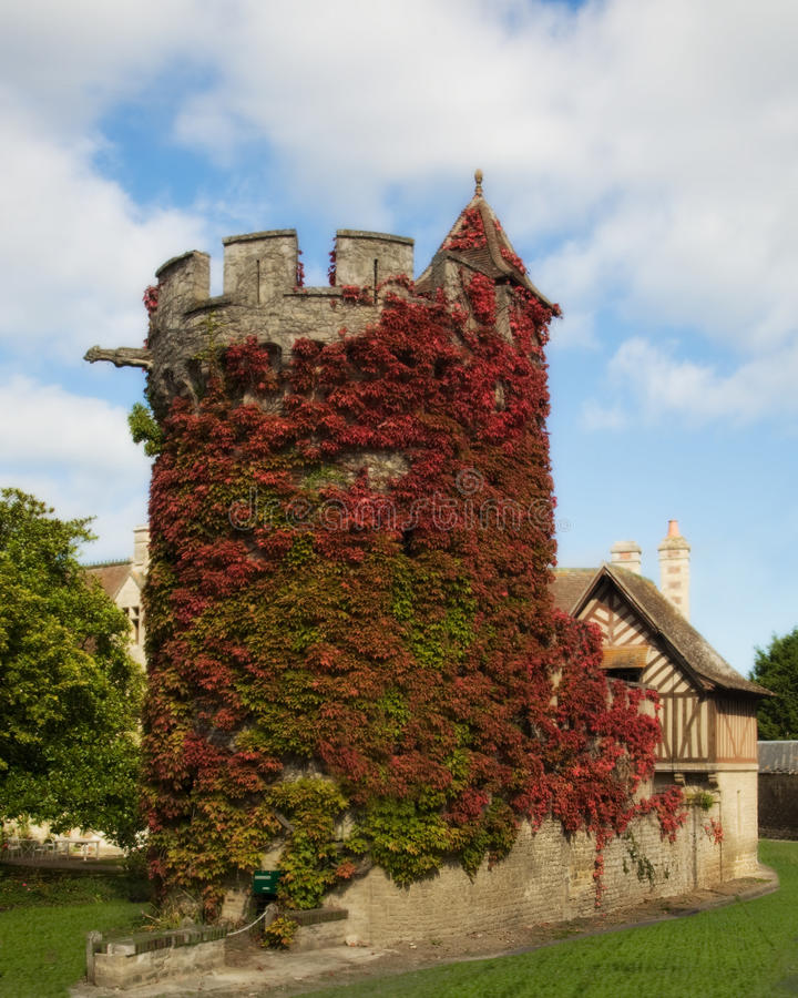 Ivy-Covered Tower in Normandy, France stock images