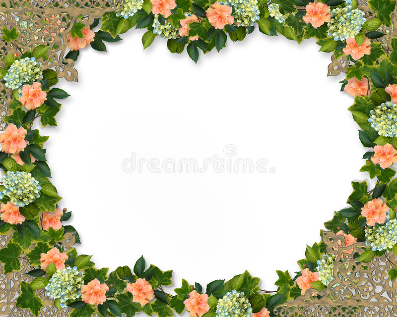 Ivy Hydrangea and Hibiscus border royalty free illustration
