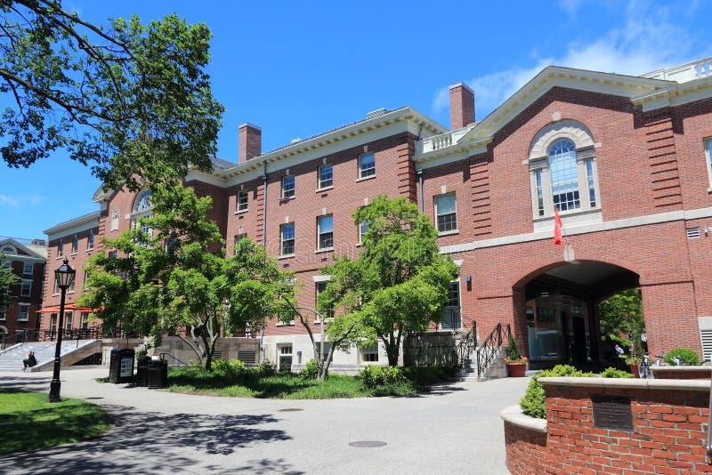 Ivy League royaltyfri fotografi