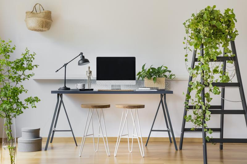 Ivy plant on a wooden ladder in a modern interior with white walls and workspace for a student with computer on a desk stock photo