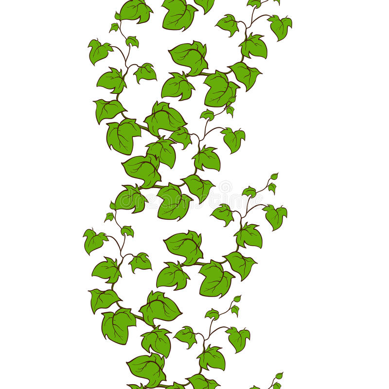 Ivy Vector Hand Drawn Seamless Vertical Pattern Stock ...