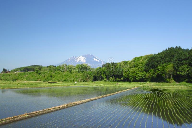 Iwate i pastoralny krajobraz zdjęcia stock
