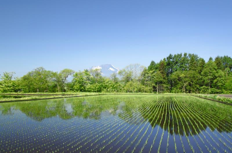 Iwate i pastoralny krajobraz fotografia royalty free