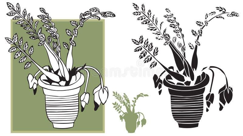 Izbowy kwiat w garnku ilustracji