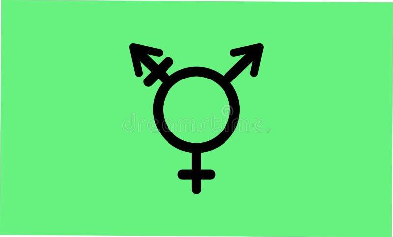 Izrael Genderqueer i Transgender dumy flaga ilustracji