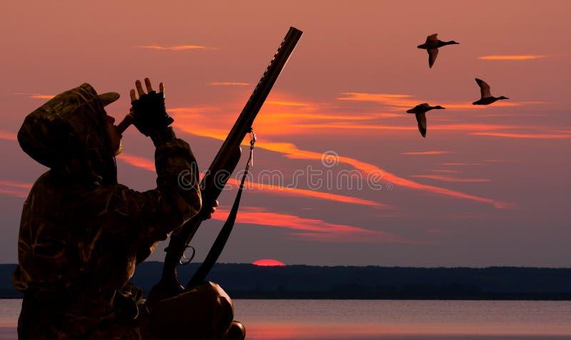 Jägaren lockar änder på gryning royaltyfri bild
