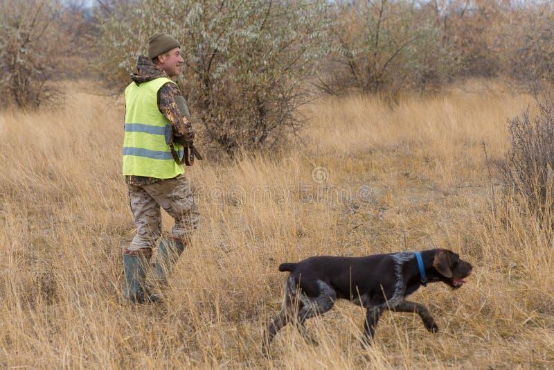 Jäger mit einem Gewehr und einem deutschen drathaar Taubenjagd mit Hunden S stockfoto