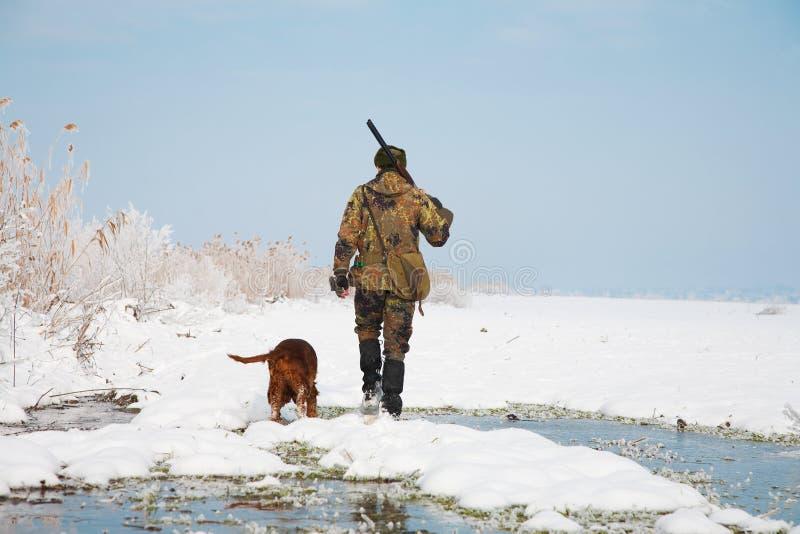 Jäger mit seinem Jagdhund während einer Jagd lizenzfreies stockfoto
