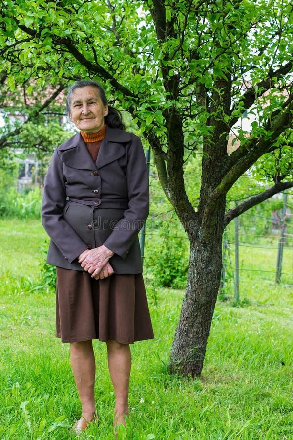 Jährige ältere Plusfrau schöne 80, die für ein Porträt in ihrem Garten aufwirft lizenzfreies stockbild