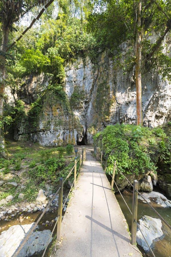 Jäkels grotta, markis och skog i Merida State royaltyfria bilder