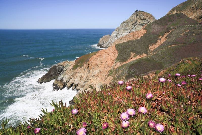 Jäkels rena klippor för glidbana, kust- udde, San Mateo County, Kalifornien royaltyfri foto