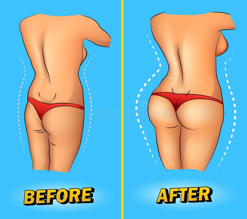 Jämförelse av magra kvinnliga bakdelar och som drar åt efter traininComparison av magra kvinnliga bakdelar och drar åt vektor illustrationer