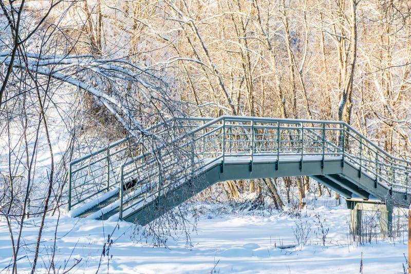 Järnbro i vinterskog royaltyfri bild